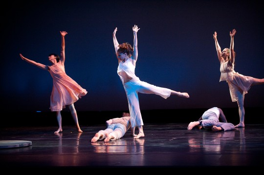 Carolyn Dorfman Dance Company Photo 2